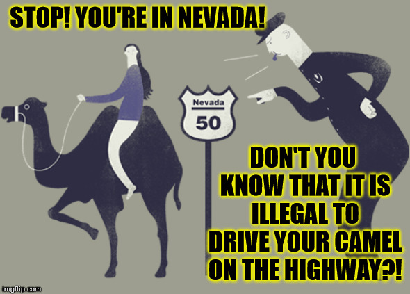If going to Nevada leave your camels at the garage - Ludicrous Laws week April 1-7th a LordCheesus, Katechuks and SydneyB event |  STOP! YOU'RE IN NEVADA! DON'T YOU KNOW THAT IT IS ILLEGAL TO DRIVE YOUR CAMEL ON THE HIGHWAY?! | image tagged in funny,memes,laws,nevada,camels,illegal | made w/ Imgflip meme maker