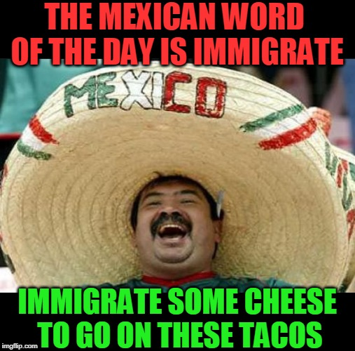 mexican word of the day | THE MEXICAN WORD OF THE DAY IS IMMIGRATE IMMIGRATE SOME CHEESE TO GO ON THESE TACOS | image tagged in mexican word of the day,nixieknox,memes | made w/ Imgflip meme maker