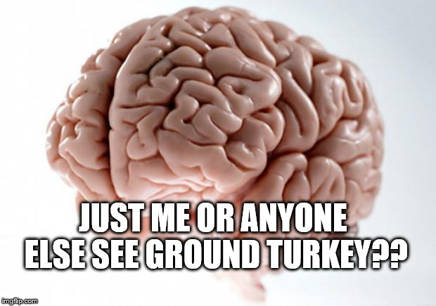 the other white meat | JUST ME OR ANYONE ELSE SEE GROUND TURKEY?? | image tagged in memes,brain,turkey | made w/ Imgflip meme maker