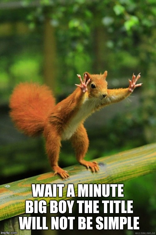 Wait a Minute Squirrel | WAIT A MINUTE BIG BOY THE TITLE WILL NOT BE SIMPLE | image tagged in wait a minute squirrel | made w/ Imgflip meme maker