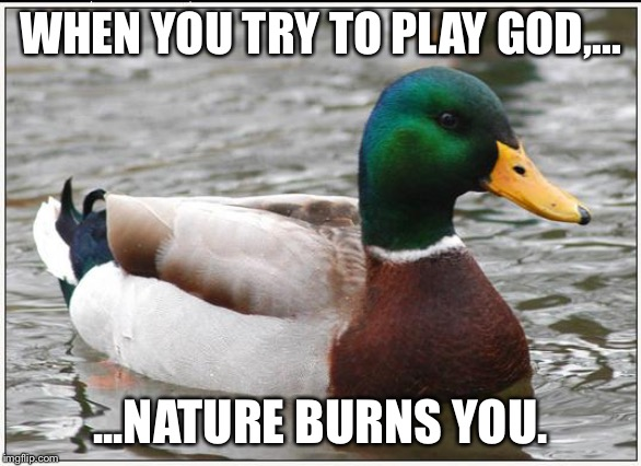 Do not try to outplay God or nature | WHEN YOU TRY TO PLAY GOD,... ...NATURE BURNS YOU. | image tagged in memes,actual advice mallard,god,nature,burn,play | made w/ Imgflip meme maker