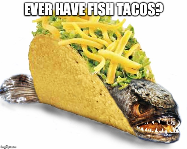 Fish Taco | EVER HAVE FISH TACOS? | image tagged in fish taco | made w/ Imgflip meme maker