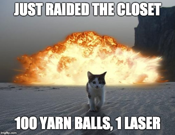 cat explosion | JUST RAIDED THE CLOSET 100 YARN BALLS, 1 LASER | image tagged in cat explosion | made w/ Imgflip meme maker