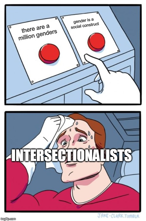 Two Buttons | there are a million genders gender is a social construct INTERSECTIONALISTS | image tagged in memes,two buttons | made w/ Imgflip meme maker