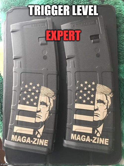 MAGA-ZINE | TRIGGER LEVEL EXPERT | image tagged in make lefties cry again,maga,trump,magazine,standard capacity | made w/ Imgflip meme maker