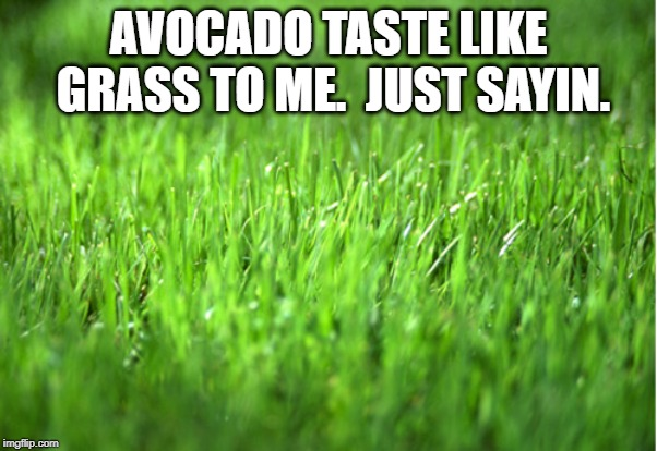 grass is greener | AVOCADO TASTE LIKE GRASS TO ME.  JUST SAYIN. | image tagged in grass is greener | made w/ Imgflip meme maker