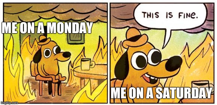 This is fine dog | ME ON A MONDAY ME ON A SATURDAY | image tagged in this is fine dog | made w/ Imgflip meme maker