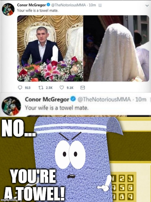 Deleted Controversial Conor McGregor Tweet = Meme Win | NO... YOU'RE A TOWEL! | image tagged in conor mcgregor,towel,towelie | made w/ Imgflip meme maker