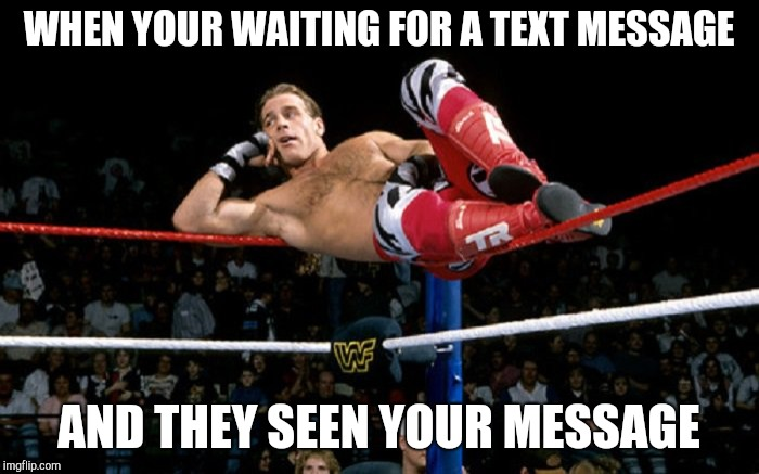 Hbk waiting | WHEN YOUR WAITING FOR A TEXT MESSAGE AND THEY SEEN YOUR MESSAGE | image tagged in hbk,wwe,wrestlemania,ignore | made w/ Imgflip meme maker