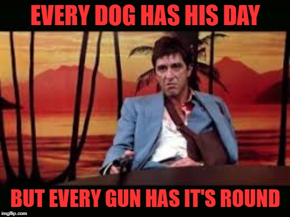 Every gun has it's round | EVERY DOG HAS HIS DAY BUT EVERY GUN HAS IT'S ROUND | image tagged in scarface,gun | made w/ Imgflip meme maker