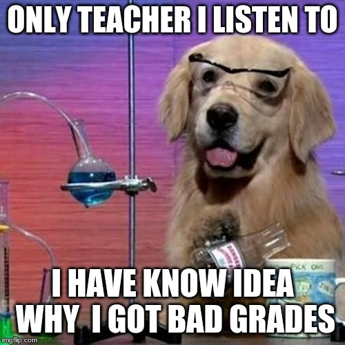 I Have No Idea What I Am Doing Dog | ONLY TEACHER I LISTEN TO I HAVE KNOW IDEA WHY  I GOT BAD GRADES | image tagged in memes,i have no idea what i am doing dog | made w/ Imgflip meme maker