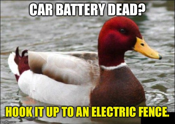 Instant charger for your car battery | CAR BATTERY DEAD? HOOK IT UP TO AN ELECTRIC FENCE. | image tagged in memes,malicious advice mallard,battery,fence,shocked,dead | made w/ Imgflip meme maker