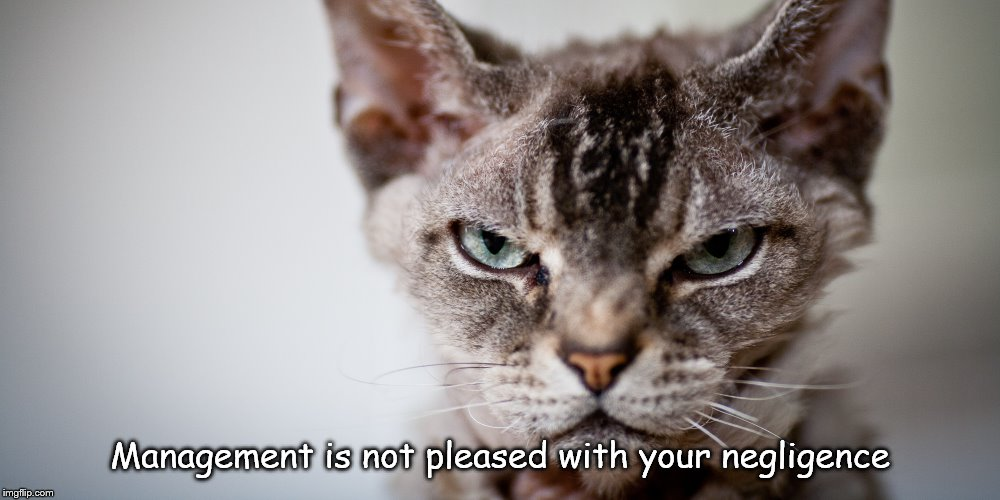 Management is not pleased with your negligence | image tagged in grumpy cat,mad cat | made w/ Imgflip meme maker