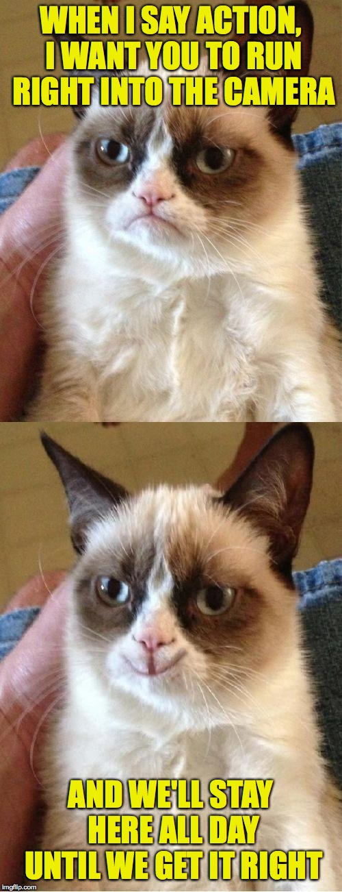 Grumpy Cat 2x Smile | WHEN I SAY ACTION, I WANT YOU TO RUN RIGHT INTO THE CAMERA AND WE'LL STAY HERE ALL DAY UNTIL WE GET IT RIGHT | image tagged in grumpy cat 2x smile | made w/ Imgflip meme maker
