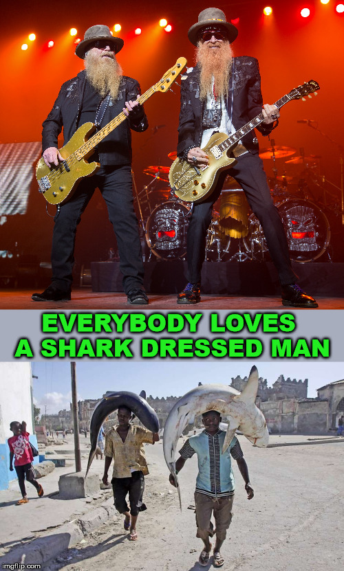 New ZZ top song | EVERYBODY LOVES A SHARK DRESSED MAN | image tagged in zz top,shark,bad pun,play on words | made w/ Imgflip meme maker