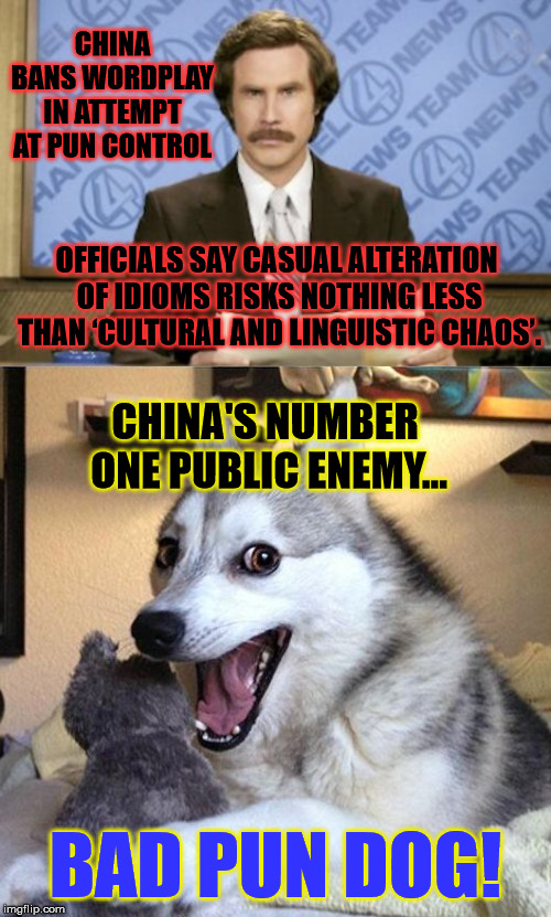 China's in Chaos! Stop making puns! - Ludicrous Laws week April 1-7th a LordCheesus, Katechuks and SydneyB event |  CHINA BANS WORDPLAY IN ATTEMPT AT PUN CONTROL; OFFICIALS SAY CASUAL ALTERATION OF IDIOMS RISKS NOTHING LESS THAN 'CULTURAL AND LINGUISTIC CHAOS'. CHINA'S NUMBER ONE PUBLIC ENEMY... BAD PUN DOG! | image tagged in memes,ron burgundy,bad pun dog,funny,laws,puns | made w/ Imgflip meme maker