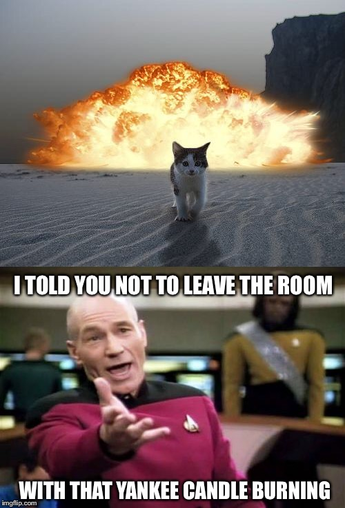 I TOLD YOU NOT TO LEAVE THE ROOM; WITH THAT YANKEE CANDLE BURNING | image tagged in memes,picard wtf,cat explosion,candle,funny | made w/ Imgflip meme maker