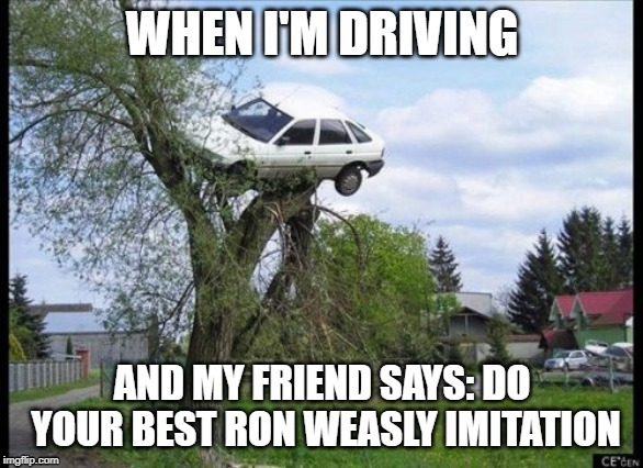 LEARN TO DRIVE, RON! | image tagged in ron weasley,harry potter,car,tree,car in tree | made w/ Imgflip meme maker