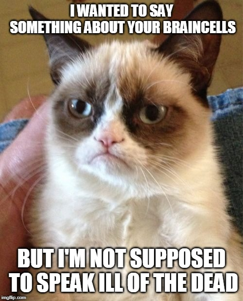 Grumpy Cat | I WANTED TO SAY SOMETHING ABOUT YOUR BRAINCELLS BUT I'M NOT SUPPOSED TO SPEAK ILL OF THE DEAD | image tagged in memes,grumpy cat | made w/ Imgflip meme maker