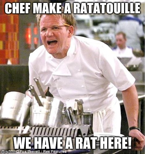 Chef Gordon Ramsay | CHEF MAKE A RATATOUILLE WE HAVE A RAT HERE! | image tagged in memes,chef gordon ramsay | made w/ Imgflip meme maker