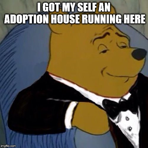 Tuxedo Winnie the Pooh | I GOT MY SELF AN ADOPTION HOUSE RUNNING HERE | image tagged in tuxedo winnie the pooh | made w/ Imgflip meme maker