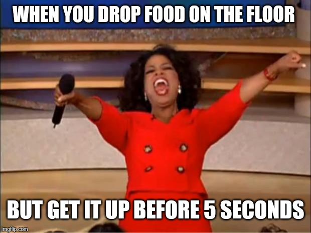 Sorry about this | WHEN YOU DROP FOOD ON THE FLOOR BUT GET IT UP BEFORE 5 SECONDS | image tagged in memes,oprah you get a | made w/ Imgflip meme maker