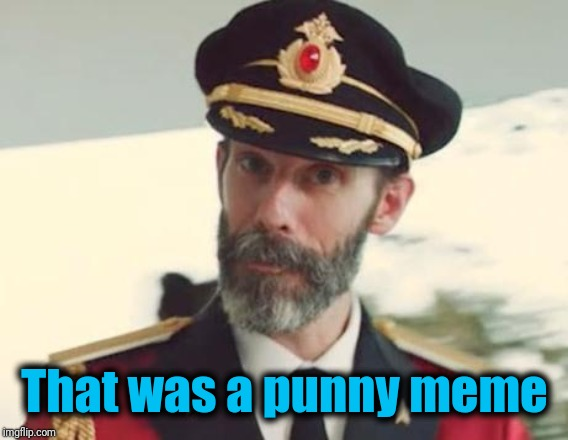 Captain Obvious | That was a punny meme | image tagged in captain obvious | made w/ Imgflip meme maker