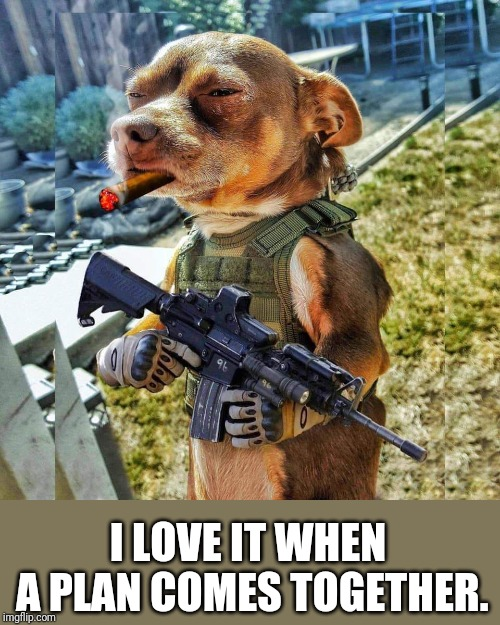 The Meme Team | I LOVE IT WHEN A PLAN COMES TOGETHER. | image tagged in dog,chuck norris with guns,assault rifle,rifle,i love it when a plan comes together | made w/ Imgflip meme maker
