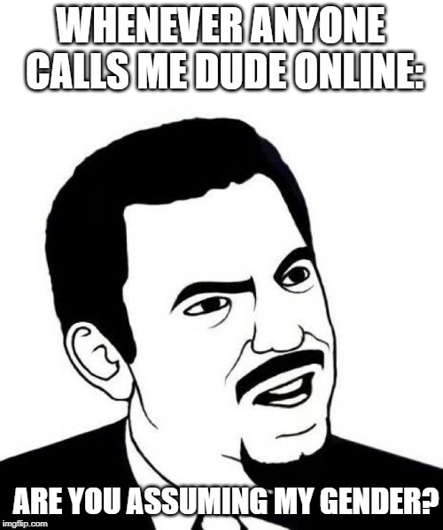 Seriously Face | WHENEVER ANYONE CALLS ME DUDE ONLINE: ARE YOU ASSUMING MY GENDER? | image tagged in memes,seriously face | made w/ Imgflip meme maker
