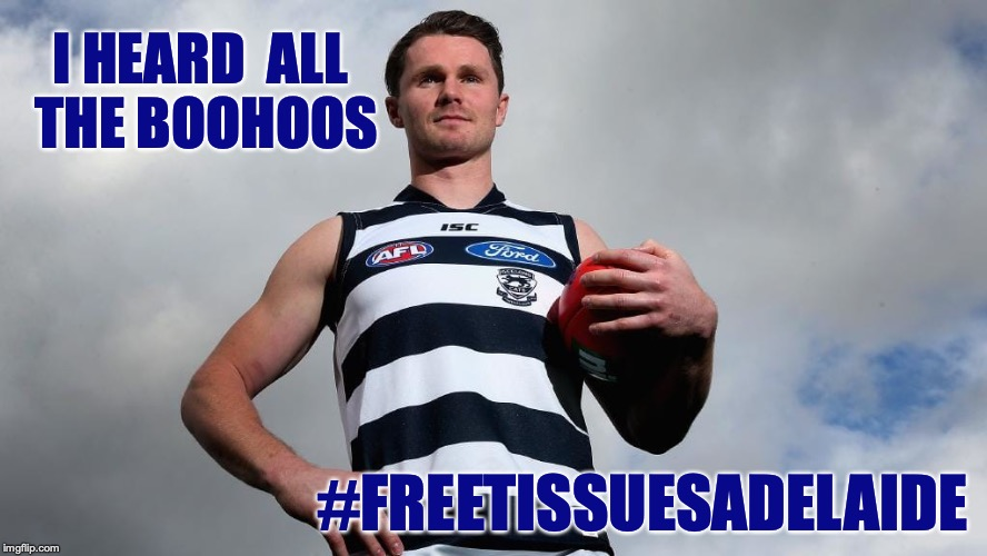 I heard all the boohoos #FreeTissuesAdelaide |  I HEARD  ALL THE BOOHOOS; #FREETISSUESADELAIDE | image tagged in patrick dangerfield,geelong cats,adelaide crows,meme,afl | made w/ Imgflip meme maker