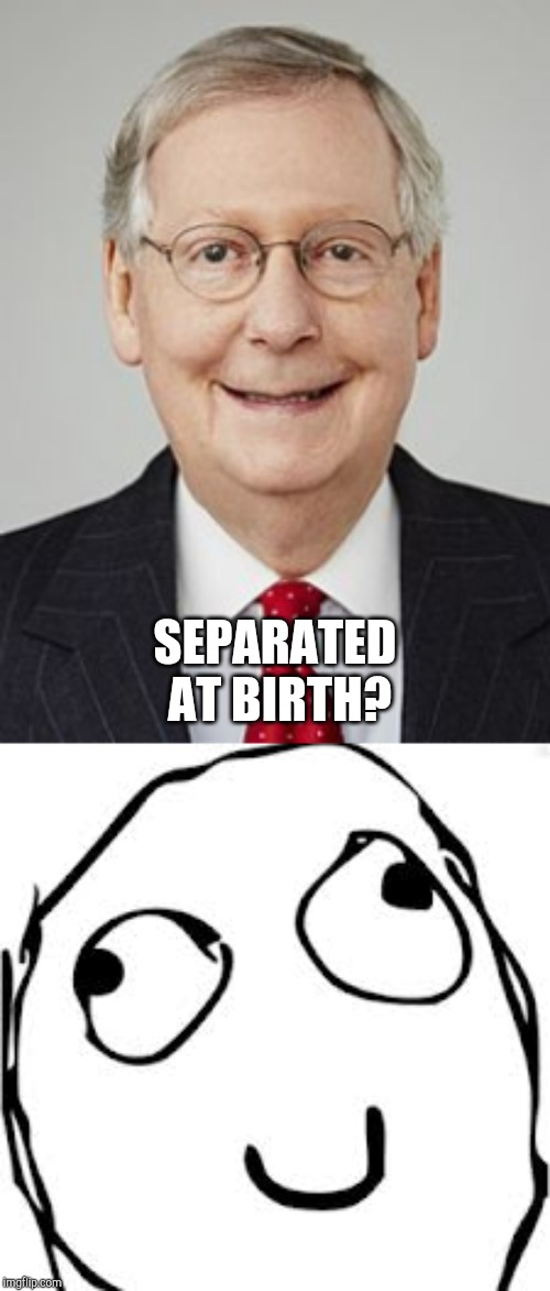 SEPARATED AT BIRTH? | image tagged in memes,derp,mitch mcconnell | made w/ Imgflip meme maker