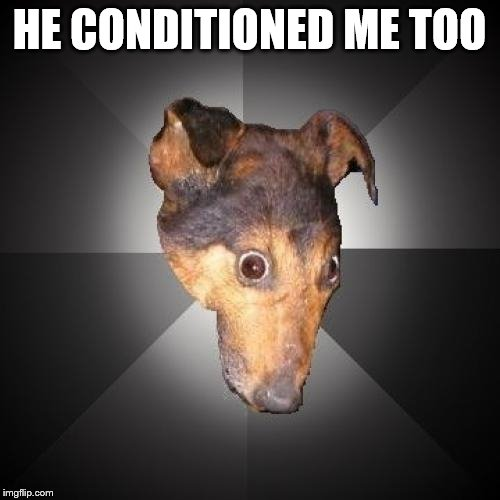 Depression Dog Meme | HE CONDITIONED ME TOO | image tagged in memes,depression dog | made w/ Imgflip meme maker