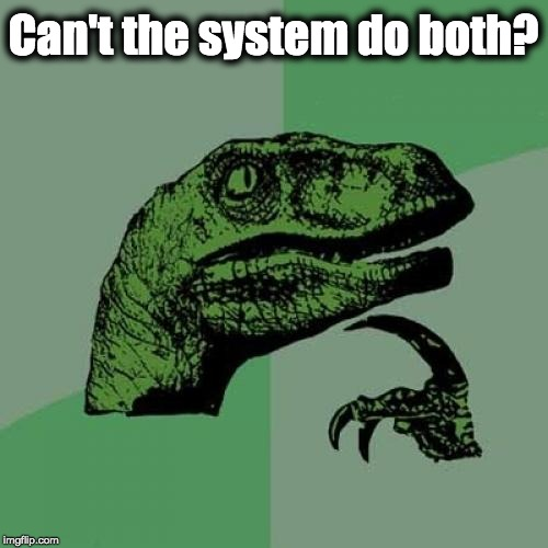 Can't the system do both? | image tagged in memes,philosoraptor | made w/ Imgflip meme maker