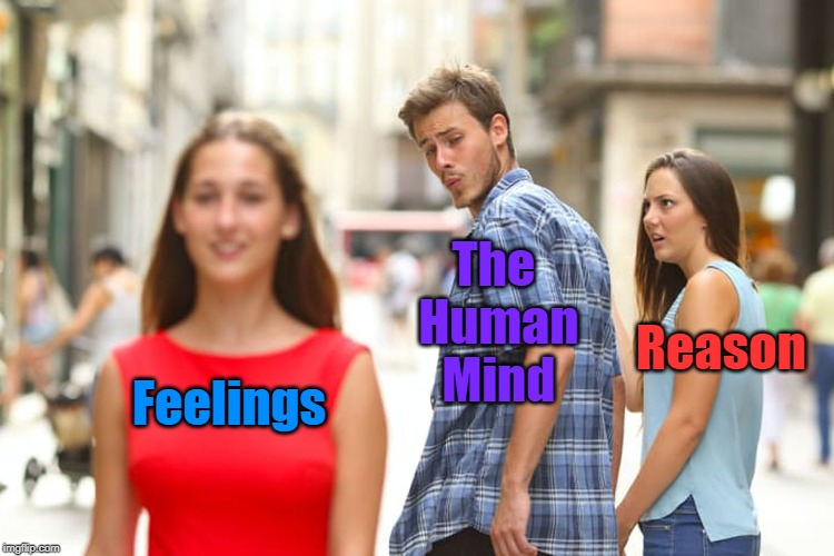 Reason vs. Feelings: Which are we Lead by More? | Feelings The Human Mind Reason | image tagged in memes,distracted boyfriend,brain,mind,feelings,reason | made w/ Imgflip meme maker
