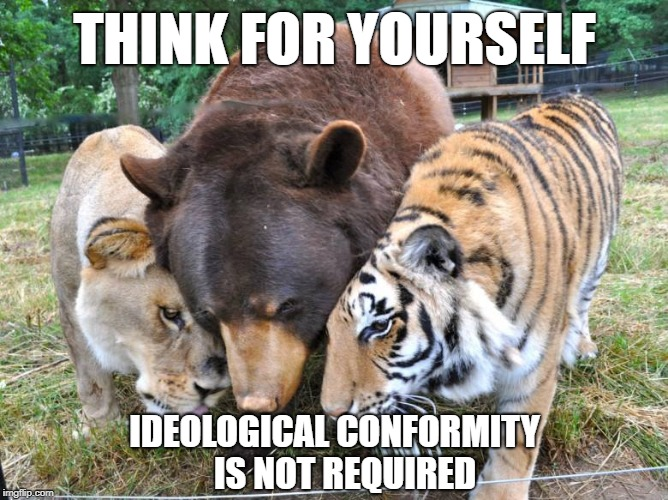 THINK FOR YOURSELF IDEOLOGICAL CONFORMITY   IS NOT REQUIRED | image tagged in lion tiger bear animal | made w/ Imgflip meme maker