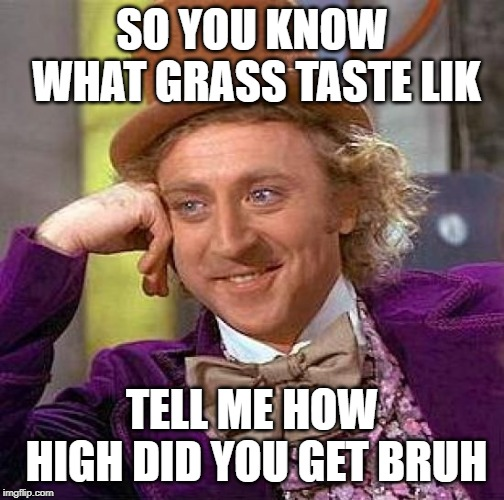 Creepy Condescending Wonka Meme | SO YOU KNOW WHAT GRASS TASTE LIK TELL ME HOW HIGH DID YOU GET BRUH | image tagged in memes,creepy condescending wonka | made w/ Imgflip meme maker