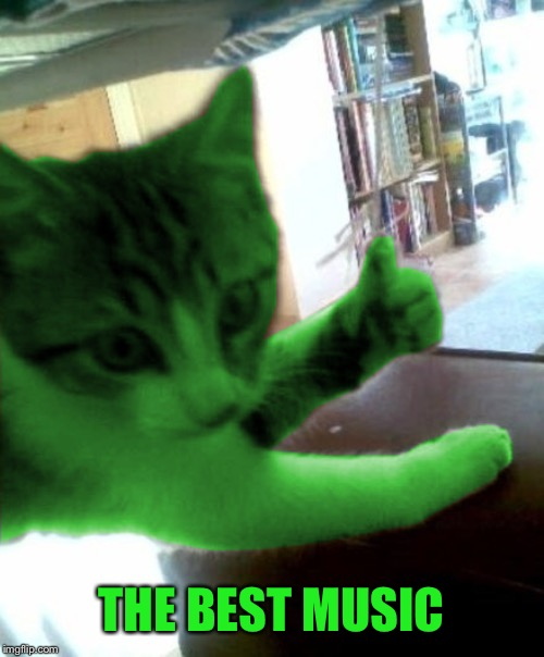 thumbs up RayCat | THE BEST MUSIC | image tagged in thumbs up raycat | made w/ Imgflip meme maker