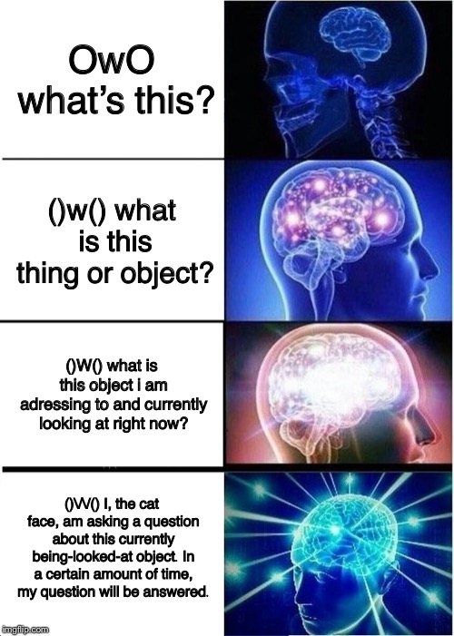 Verbose Week #1 |  Post your verbose memes! | OwO what's this? ()w() what is this thing or object? ()W() what is this object i am adressing to and currently looking at right now? ()//()  | image tagged in memes,expanding brain,verbose,owo,cat face | made w/ Imgflip meme maker