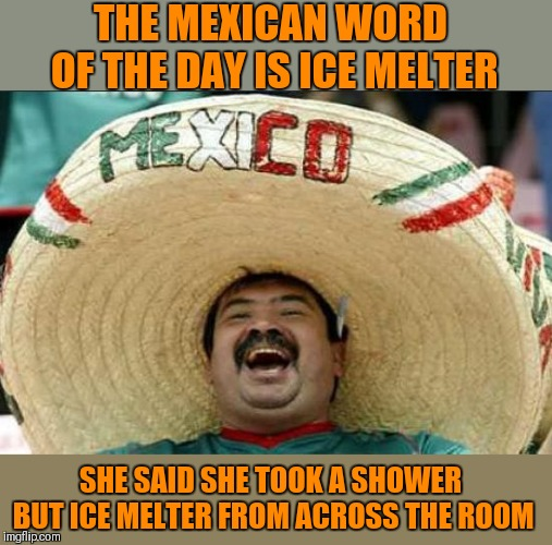 mexican word of the day | THE MEXICAN WORD OF THE DAY IS ICE MELTER SHE SAID SHE TOOK A SHOWER BUT ICE MELTER FROM ACROSS THE ROOM | image tagged in mexican word of the day,memes,can't take credit,funny,shower,stinky | made w/ Imgflip meme maker