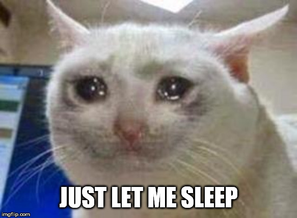 Sad cat | JUST LET ME SLEEP | image tagged in sad cat | made w/ Imgflip meme maker