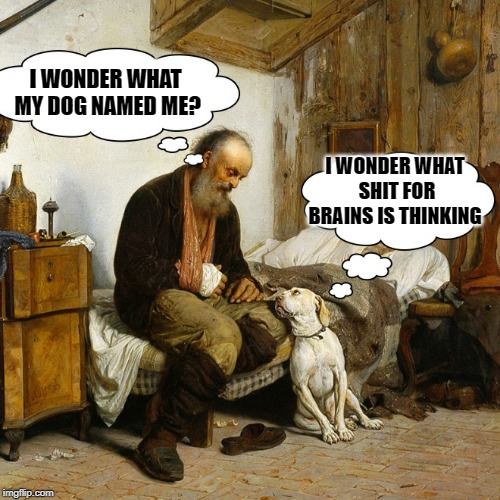 my dog name | I WONDER WHAT MY DOG NAMED ME? I WONDER WHAT SHIT FOR BRAINS IS THINKING | image tagged in dog,man,joke | made w/ Imgflip meme maker