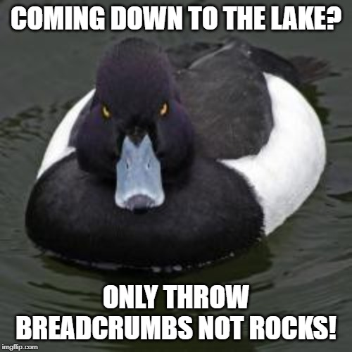 Angry Advice Mallard | COMING DOWN TO THE LAKE? ONLY THROW BREADCRUMBS NOT ROCKS! | image tagged in angry advice mallard | made w/ Imgflip meme maker