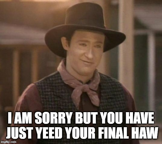 I AM SORRY BUT YOU HAVE JUST YEED YOUR FINAL HAW | image tagged in you have yeed your last haw ltn data | made w/ Imgflip meme maker
