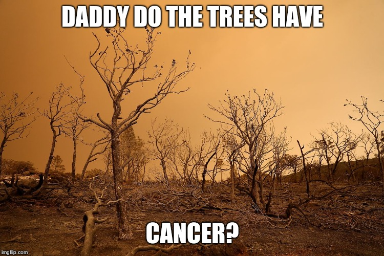 nature's cancer | DADDY DO THE TREES HAVE CANCER? | image tagged in tree,dead,cancer | made w/ Imgflip meme maker