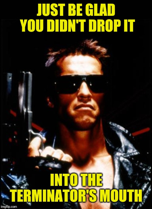 terminator arnold schwarzenegger | JUST BE GLAD YOU DIDN'T DROP IT INTO THE TERMINATOR'S MOUTH | image tagged in terminator arnold schwarzenegger | made w/ Imgflip meme maker