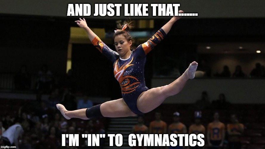 "AND JUST LIKE THAT....... I'M ""IN"" TO  GYMNASTICS 