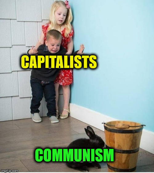 CAPITALISTS COMMUNISM | image tagged in rabbit,capitalism,communism | made w/ Imgflip meme maker