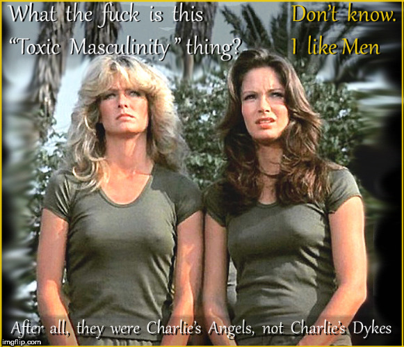 They WERE Charlie's Angels, not Charlie's Dykes | image tagged in charlie's angels,hot babes,lol so funny,vintage tv,funny memes,lgbtq | made w/ Imgflip meme maker