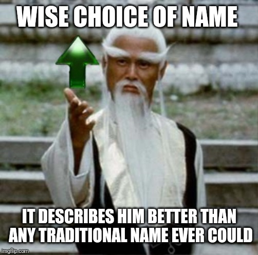 WISE CHOICE OF NAME IT DESCRIBES HIM BETTER THAN ANY TRADITIONAL NAME EVER COULD | made w/ Imgflip meme maker