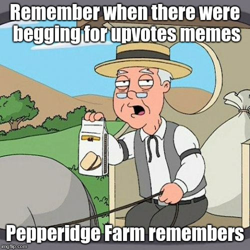 Pepperidge Farm Remembers Meme | Remember when there were begging for upvotes memes Pepperidge Farm remembers | image tagged in memes,pepperidge farm remembers | made w/ Imgflip meme maker